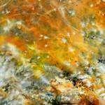 Peindre un arbre en automne à l'aquarelle