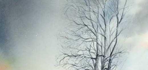 Ambiance grise pour un paysage d'hiver